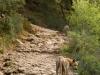 Kreta. Nasz przewodnik w drodze do jaskini Dikti