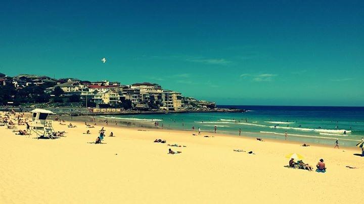 Bondi Beach, Sydney – jedna z najpopularniejszych plaż w Sydney
