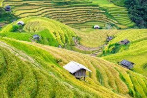 Wietnam – przygotowania